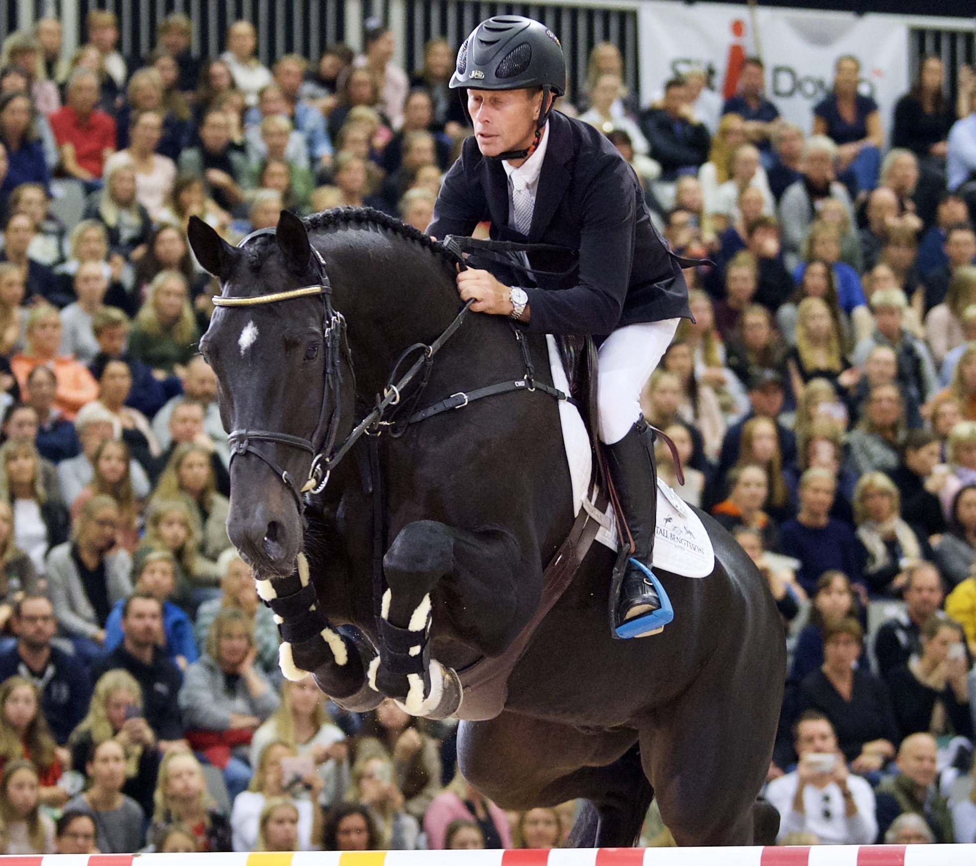 Several clear rounds in Wierden — News — News — Stall Bengtsson